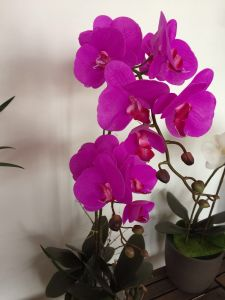 Real Touch Orchids Artificial Flower