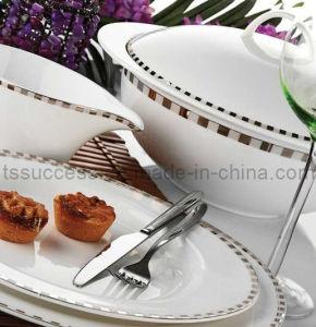 85PC Fine Bone China Dinner Ware
