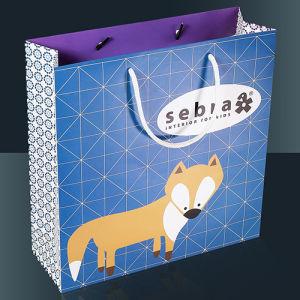 Gift Bag / Paper Gift Bag
