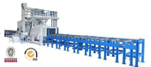 Roller Conveyor Type / Pass Through Type Shot Blasting Machine / Shot Blast Machine with BV, SGS and ISO pictures & photos