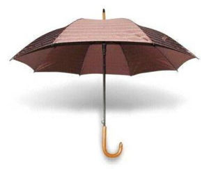 Straight Umbrella, Wood Handle Auto Open (BR-ST-173) pictures & photos