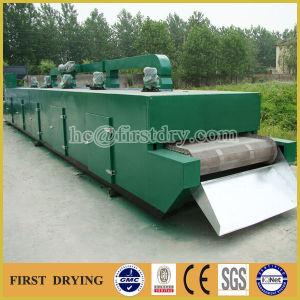 Dw Series Mesh Belt Drying Equipment