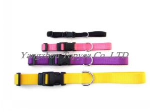 Nylon Cat Collar Dog Collar Pet Collar Pet Products pictures & photos