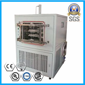High Efficiency Freeze Dryer Price/Food Freeze Dryer Price/Fruit Drying Machine pictures & photos