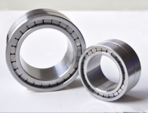 Double Row Cylindrical Roller Bearing SL04 200PP