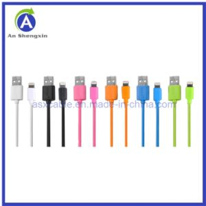 Hot Sell New Quality USB Data / Charging Cable