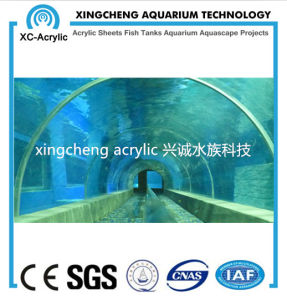 Customized Transparent Aquarium Tunnel Project pictures & photos