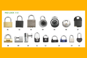 Bike Lock, Bicycle Lock for Sale Tim-Pl001 pictures & photos
