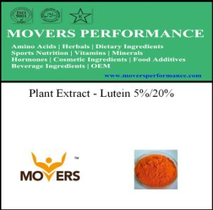 Organic Plant Extract --- Lutein 5%/ 20% pictures & photos