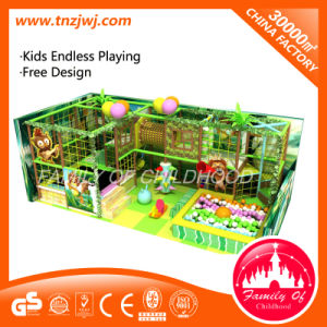 Kids Forest Design Naughty Castle Indoor Playground with TUV Certificate pictures & photos