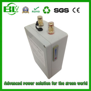 Customzied 20ah/40ah/60ah/80ah 12V/11.1V Lithium-Ion Battery Pack for Fishing Instrument pictures & photos