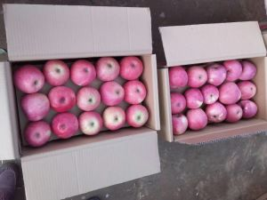 Crisp Fresh Delicious Red Star Apple pictures & photos