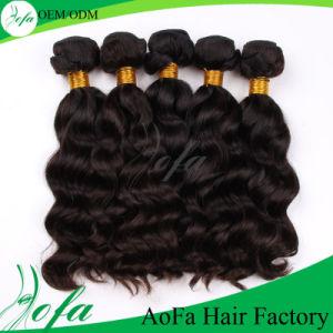 Brazilian Human Virgin Natural Black and Brown Human Hair Wig pictures & photos