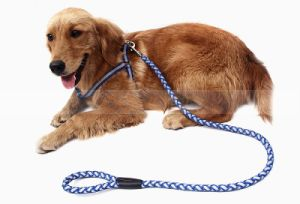 Pet Dog Reflective Braided Harness Leash Hiking Training Safe Pet Belt pictures & photos