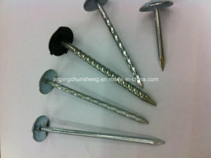 Electro Galvanized Umbrella Roofing Nail pictures & photos