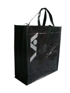 PP Woven Promotion Eco Bag