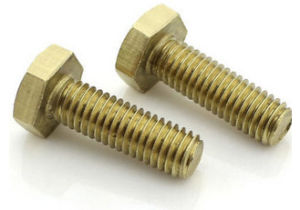 Copper/ Fastener / Hardware / Spare Parts / Bolt pictures & photos