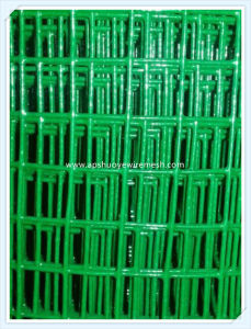 Electro Galvanized/Stainless Steel/PVC Coated Welded Wire Mesh pictures & photos