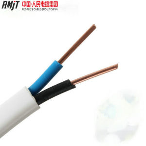 BVVB/Blvb/Blv/Blvvb Copper Conductor PVC Electric Wire Cable and Flat Cable pictures & photos