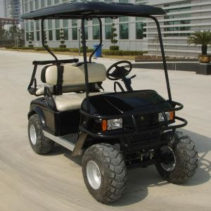 2 Seater Lead Acid Battery Electric Utility Vehicle (DH-C2) pictures & photos