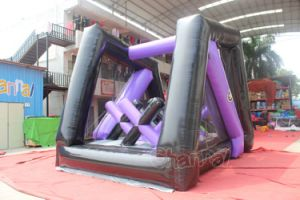 Xtreme Adrenaline Run Obstacle Course Chob532-Purple pictures & photos
