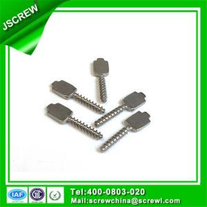 Custom M3 Special Screw pictures & photos
