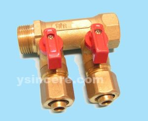 Brass Manifolds pictures & photos