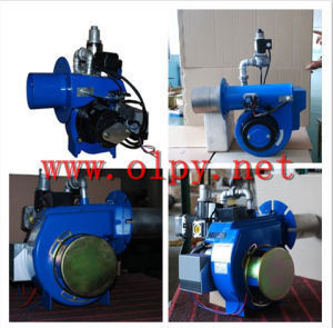 Olpy Mini Use Boiler and Incinerator Gas Burner 170000-190000 pictures & photos