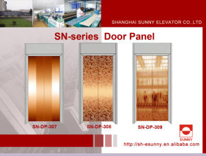 Elevator Door Panel in Rose Golden Color (SN-DP-307) pictures & photos