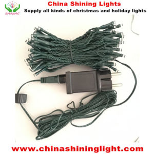 Ce Euro Standard Waterproof Steady Function 6V 30W 100LED 10m Green Wire LED String Lights