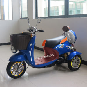 New Three Wheel Electric Scooter Bike/Tricycle, Mobility Scooter, E-Scooter, E-Bike pictures & photos