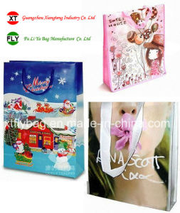 Eco-Friendly Lamination Tote Bag for Festival & Promotion pictures & photos