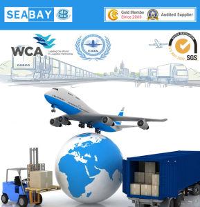 Bulk Cargo Shipping From Shenzhen/Guangzhou to Saudi Arabia pictures & photos