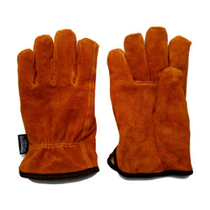 Leather Drivers Driving Gloves with Thinsulate Full Lining pictures & photos