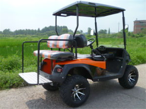 Gasoline Powered off Road Golf Buggy pictures & photos