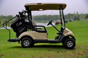 China Best Seller__Dongfeng Delicately Designed Solar Energy (S) Golf Car with 2 Seats, Electric Car pictures & photos