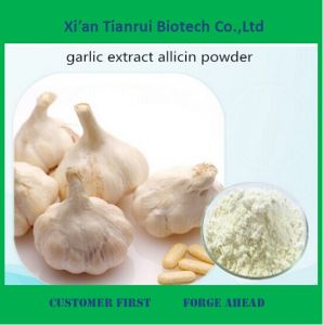 Garlic Extract, Garlic Alliin 2%, 3%, 5%, 6%, 8%, 10%, 20% pictures & photos