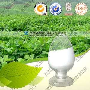 Natural Stevia Glycosides Rebaudioside-a Stevia Extract pictures & photos