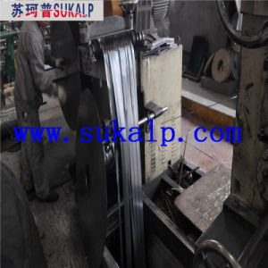 Dx51d Z140 Hot Dipped Galvanized Steel Strips pictures & photos