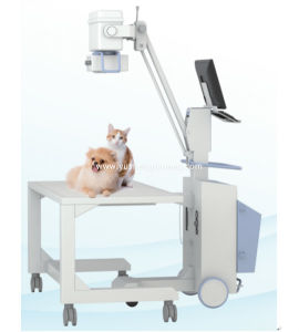Hot Sale High Qualified Veterinary 50mA X-ray Diagnostic Machine pictures & photos