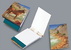 Customized Printing Soft Paper Cover Sticky Note pictures & photos