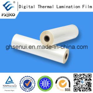 Super Bonding Thermal Lamination Film for Digital Printing (35mic Gloss & 35mic Matt) pictures & photos