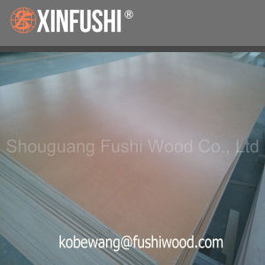 Furniture Grade UV Birch Plywood pictures & photos