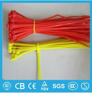 Zip Ties, Plastic Cable Ties, Nylon Cable Ties pictures & photos