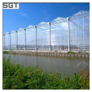 4mm 5mm Super White/Ultra Clear Tempered Glass for Greenhouse pictures & photos