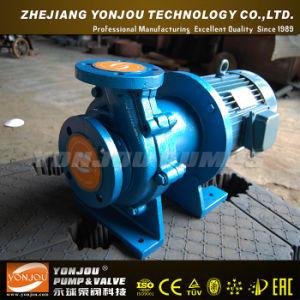 220-Volt Water Pump pictures & photos
