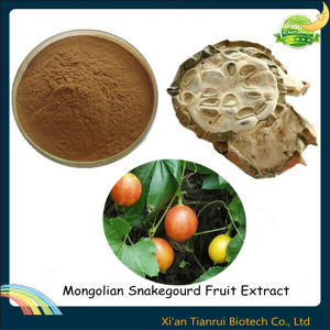 Mongolian Snakegourd Fruit Extract pictures & photos