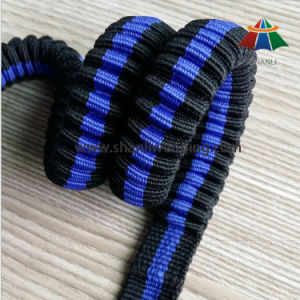 Reflective Bungee Elastic Leash for Pet Product pictures & photos