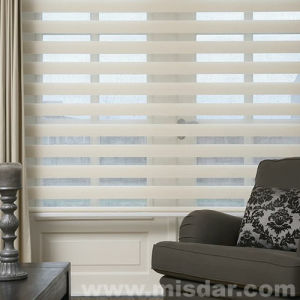 New Design Zebra Roller Shade pictures & photos