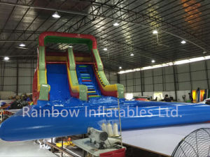 2016 Hot Sale Giant Inflatable Water Slide with Water Pool pictures & photos